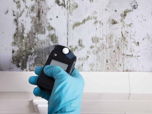 Feuchtigkeitsmessung an schimmliger Wand